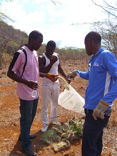 Local organizations and volunteers participate in habitat restoration activities.