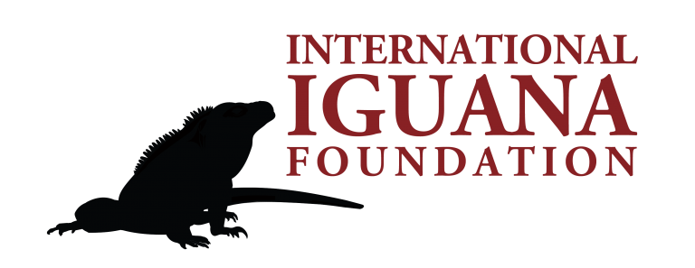 International Iguana Foundation Logo