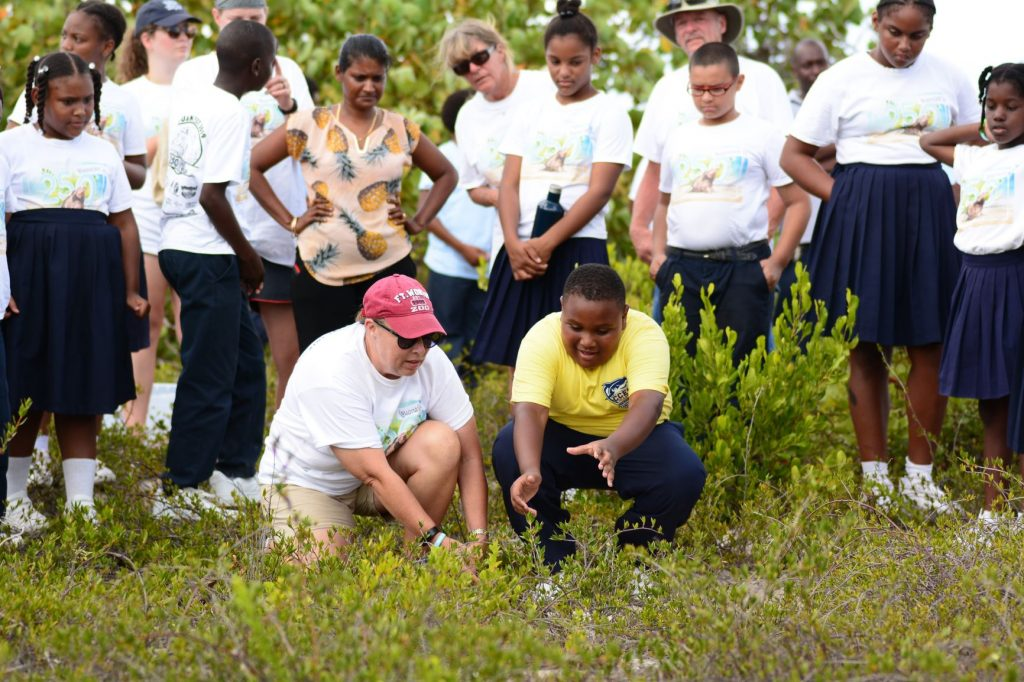 A student from the Claudia Creque Education Center releases a headstarted Anegada Iguana