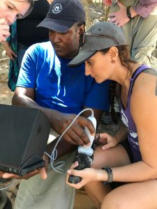 Dr. Stesha Pasachnik and student Joe Ultra sounding a Roatan Spiny-tailed Iguana