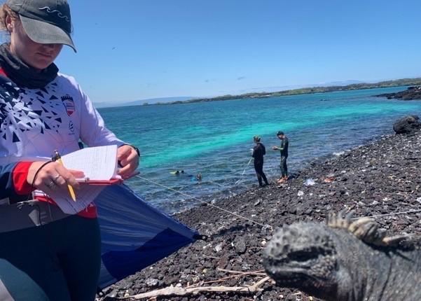 Field Assistant Cathy Hobbs recording iguana measurements whilst the snorkel team collect habitat data in eastern Fernandina island © Juan Pablo Muñoz-Pérez