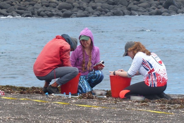 Jen Jones and Cathy Hobbs teaching local volunteer Emanuel Revelo beach microplastic survey techniques in Cabo Douglas, Fernandina island © Greg Lewbart,