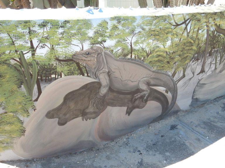 Interpretative mural of Rhinoceros Iguana in Las Salinas in collaboration with CEMEX and BirdLife International, November 2018. By Hector Andujar.