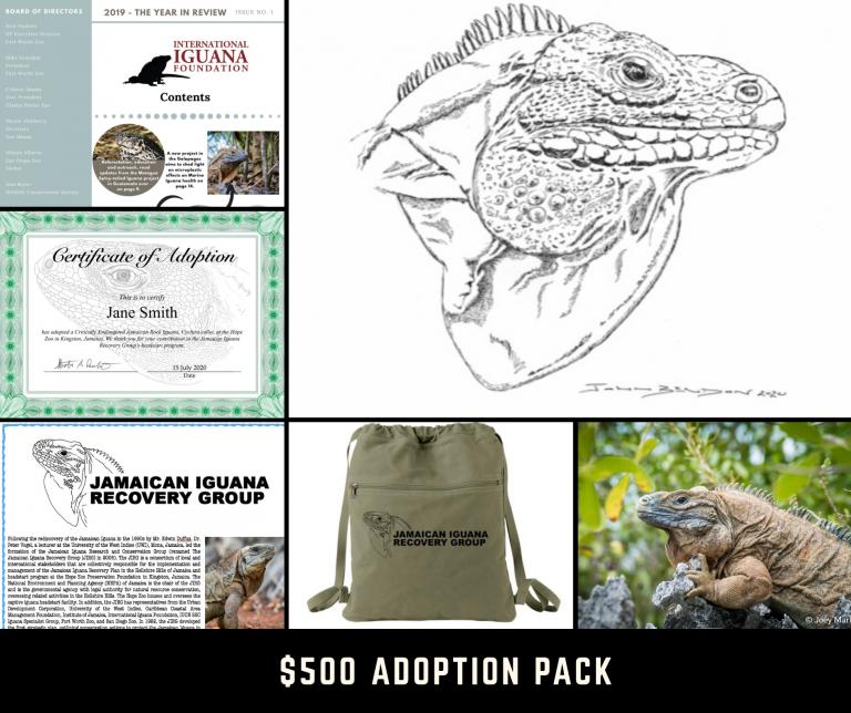 $500 adoption
