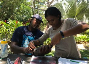 Roatan Iguanas and Conservation workshop